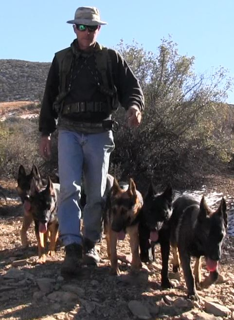 Prescott Dog Boarding Prescott Dog Training